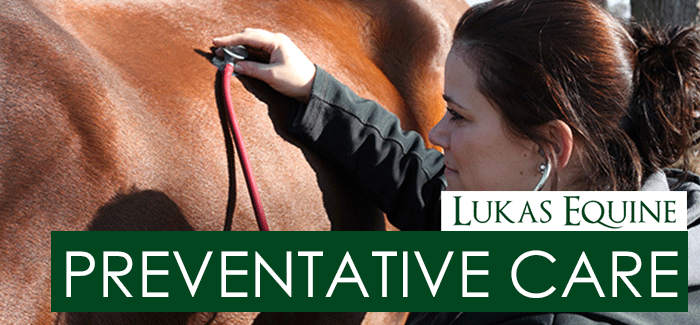 Preventative Equine Care Illinois