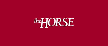 The Horse Website